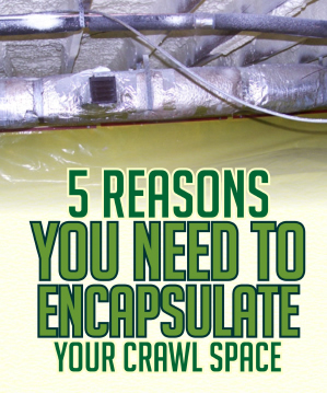Free eBook-5 Reasons Why You Need To Encapsulate Your Crawl Space
